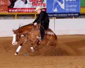 Purdey Lil Gun ridden by Cody Puttkamer