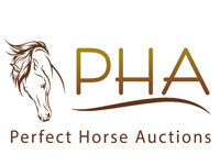 perfect-horse-auctions