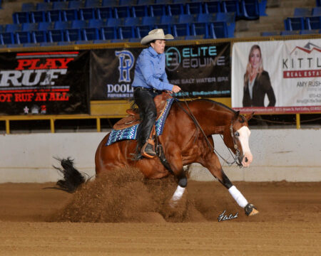 Novice Horse Non Pro L2-Wilmas Gotta Whiz-Lisa Clark Hoffman-7-22-2020-FD-0202