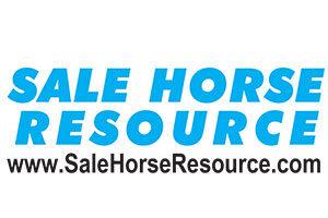 sale-horse-resource-webcast